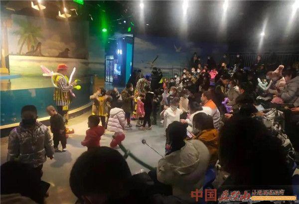 忻州游玩好去处!萌宠海洋乐园新增60多种动物加美猴王表演